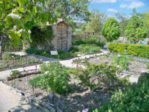Salagon Jardin 1