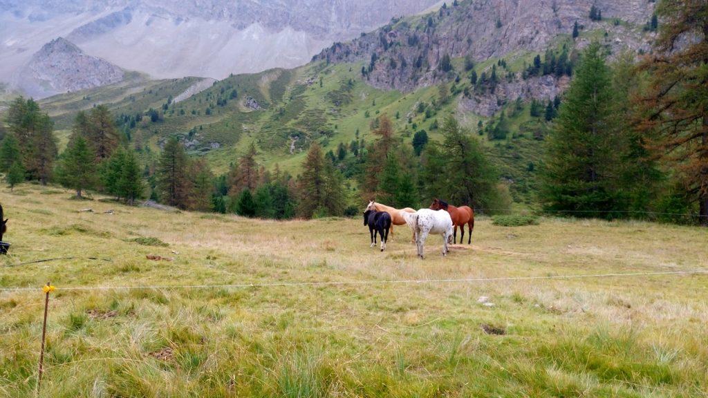 Col Du Tronchet2 2