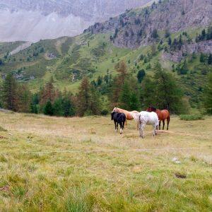 Col Du Tronchet2