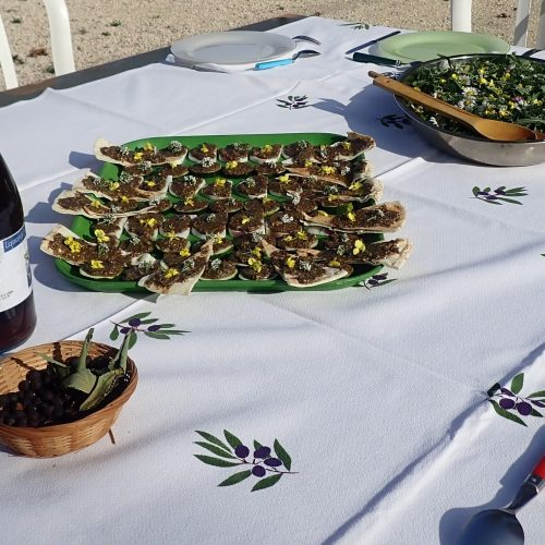 Repas Sauvage Calanques