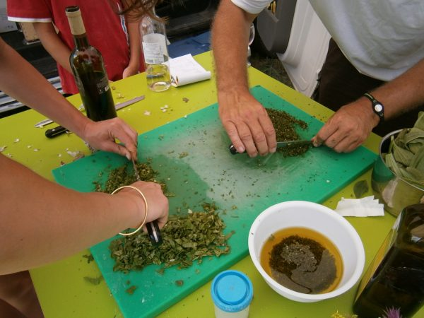 Atelier Cuisine Sauvage 1